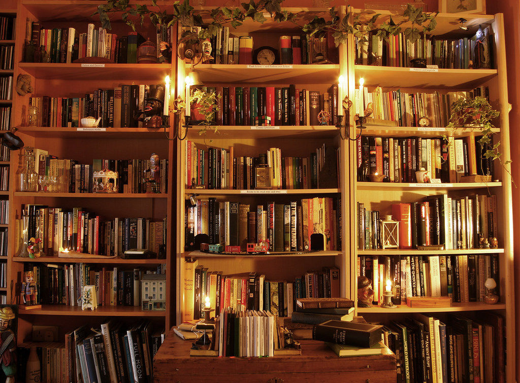 My Library by Alan Cleaver